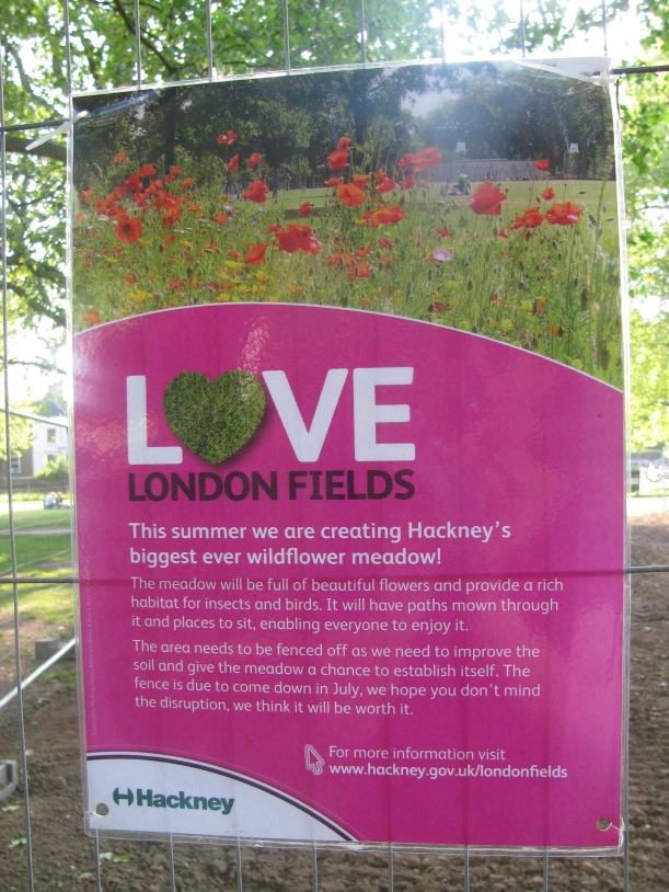 London Fields wild flower meadow (6 June 2013)