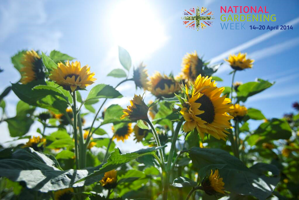 National Gardening Week #ngw