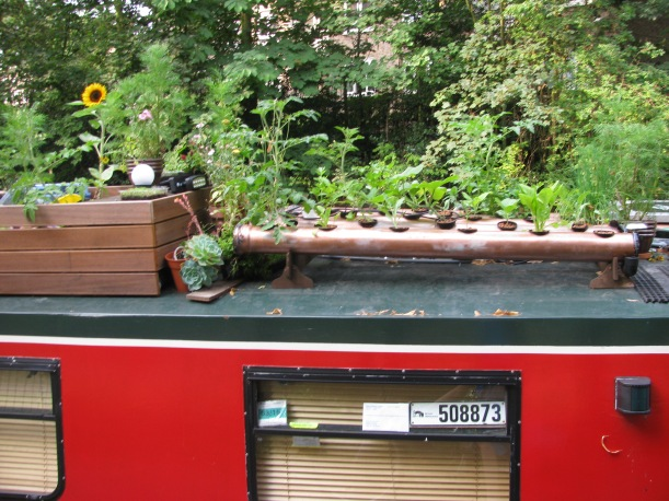 Garden on roof of Canal Boat, regents Canal, Hackney, London