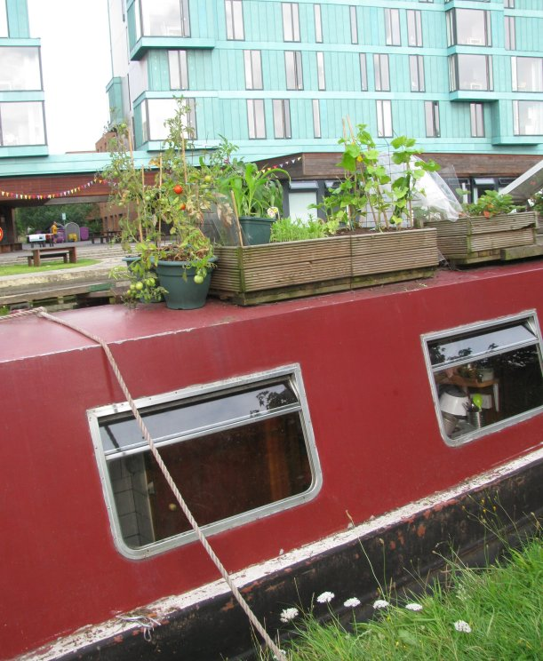 Garden on Canal Boat, London